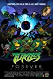 Teenage Mutant Ninja Turtles Poster Movie 11 x 17 In - 28cm x 44cm