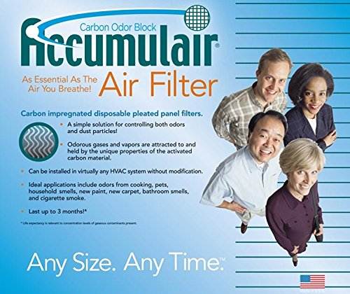 20x20x1 (19.5x19.5x.75) Carbon Odor Block Aftermarket Totaline Replacement Filter