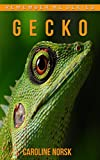 Gecko: Amazing Photos & Fun Facts Book About Gecko For Kids (Remember Me Series)