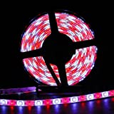 SUPERNIGHT 16.4ft (5m) 5050 300Leds RGB+WHITE Flexible RGBW Waterproof LED Strip Lighting Kit ,5M RGBW Strip + 40Key RGBW Remote Controller + 12V 5A Power Supply
