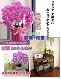 ★ 新製品 ★ 超豪華版 光触媒 胡蝶蘭 ★
