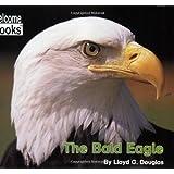 The Bald Eagle (Welcome Books)