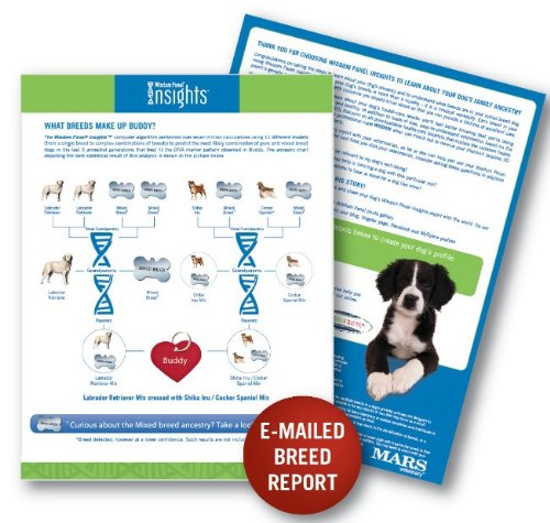 Wisdom Panel® Insights Mixed Breed DNA Test Kit