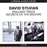 Classic Albums (2in1)von &#34;David Sylvian&#34;