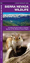Sierra Nevada Wildlife: A Folding Pocket Guide to Familiar Species of the Montane Forest Region (Pocket Naturalist Guide Series)