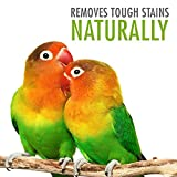 Bird Cage Cleaner and Bird Poop Remover - Great for cleaning up bird droppings in Parakeet, Parrot and Macaw Bird Cages - 32 oz Spray Bottle