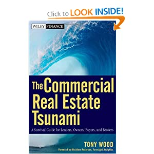 The Commercial Real Estate Tsunami: A Survival Guide for Lenders, Owners, Buyers, and Brokers (Wiley Finance) Tony Wood and Matthew Anderson