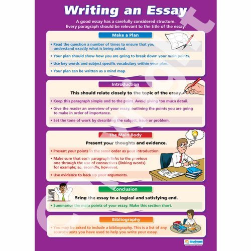 Writing A Essay For Dummies