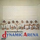 Dynamic Arena