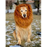 Lion Mane Costume and Big Dog Lion Mane Wigs for Holloween Christmas Party- Large Dog Costumes by IN HAND