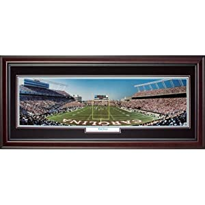 University of South Carolina Gamecocks (End Zone) Deluxe Framed Panoramic Photo by PalmBeachAutographs.com