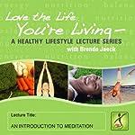An Introduction to Meditation   Brenda Jaeck