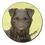 Patterdale Terrier 'Yours Forever' Fridge Magnet Stocking Filler, Ref:AD-PT2yFM