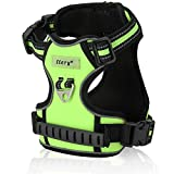 Dog Harness, Itery Adjustbale Non Pull Pet Harness Soft Vest Padded Dog Body Harness with Handle & Reflective Stitching (M, Green)