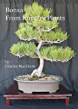img - for Bonsai From Nursery Plants book / textbook / text book