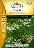 Burpee 69653 Spanish - Herb Cumin Seed Packet