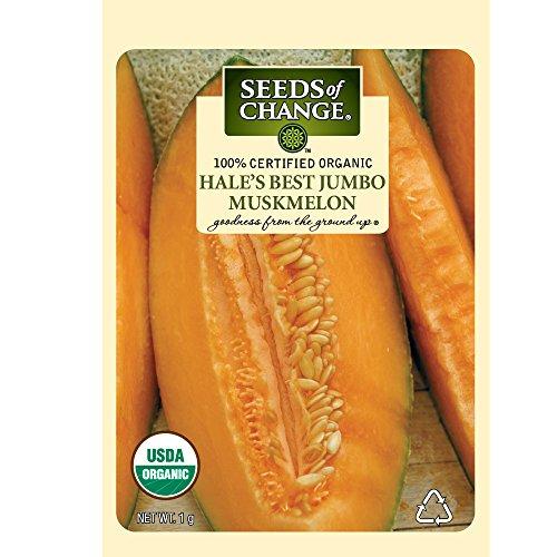 Seeds of Change Certified Organic Muskmelon, Hales Jumbo - 1 grams, 30 Seeds Pack