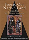 img - for True to Our Native Land: An African American New Testament Commentary book / textbook / text book