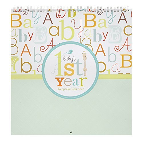 C.R. Gibson Kids First Year Keepsake Calendar, Baby Love (Discontinued by Manufacturer)