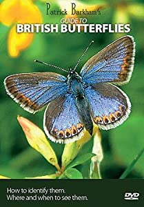 Patrick Barkham's Guide to British Butterflies