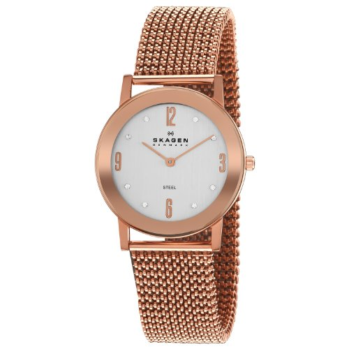 Skagen Designs Ladies Stretch Mesh Analogue Watch 39LRR1 With Silver Dial