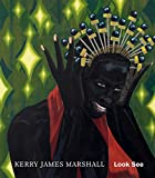 img - for Kerry James Marshall: Look See book / textbook / text book