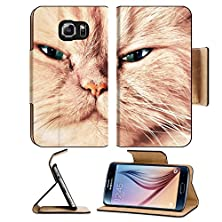 buy Msd Samsung Galaxy S6 Flip Pu Leather Wallet Case Cute Cat Face Close Up Portrait Looking Straight At The Camera Image 19290329