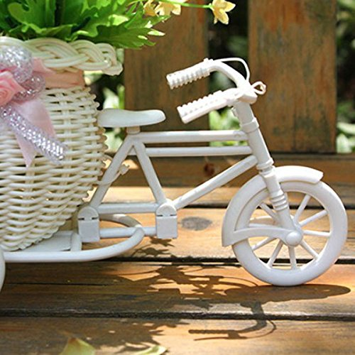 Resin Partners Home Design Products Soledi Plastic White Tricycle Bike  Design Flower Basket