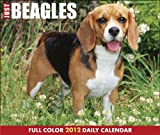 Just Beagles 2012 Calendar (Just (Willow Creek)) Reviews