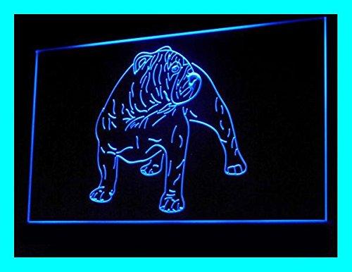 C B Signs Bulldog Dog Led Sign Neon Light Sign Display