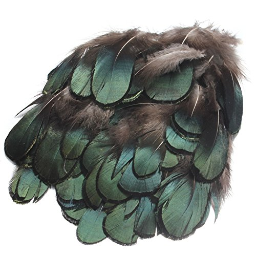 auaudate-50stk-natur-dekoration-fasan-federn-fur-kunsthandwerk-diyhutebastelnzuhause-grun