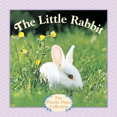 The Little Rabbit (Phoebe Dunn Collection) front-462754