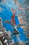 Havana, Cuba, Museum of the Revolution, murals on ceiling of museum by Bill Bachmann / Danita Delimont Museum Quality Fine Art Print sold by Great Art Now, size 22x34 inches. This print is popular in our Architectural Art, Architectural Desig...