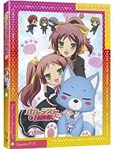 「バカテスにっ!」BD第4巻スピンオフアニメは島田葉月メイン