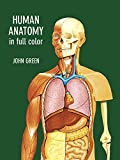 Human Anatomy in Full Color (Dover Children s Science Books)