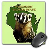Sandy Mertens Wisconsin - Wisconsin Badger State - MousePad (mp_41201_1)