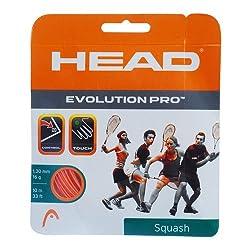 Head Evolution Pro Squash Strings