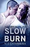 Slow Burn (Assassins Book 1) - V. J. Chambers