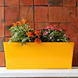 Iron Table Top Planter Rectangular - Large - Yellow