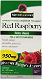 Nature's Answer Red Raspberry Leaf Vegetarian Capsules, 90-Count