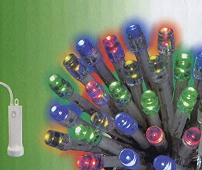 Set of 48 Multi LED Battery Operated 8-Function Christmas Lights - Clear Wire
