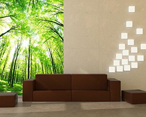 bilderdepot24 selbstklebende fototapete gr ner wald 100x150 cm direkt vom hersteller. Black Bedroom Furniture Sets. Home Design Ideas