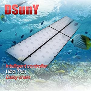 DSunY® Programmable Intelligent Ultra-thin LED Lighting System Plus Moonlights for Aquarium/Reef SPS/LPS/ Soft Corals, 72-Inch