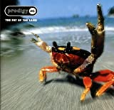 The Fat Of The Land [VINYL] Prodigy