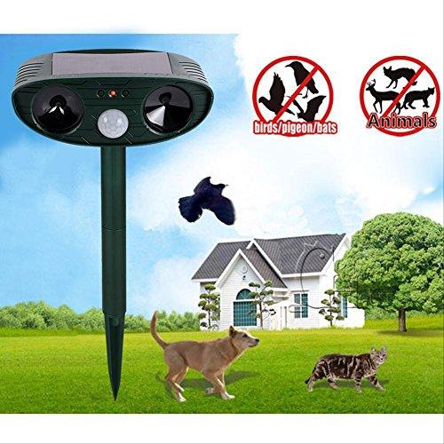 gatto-repellente-a-ultrasuoni-per-animali-repellente-di-dissuasione-scarer-sensore-di-movimento-dell