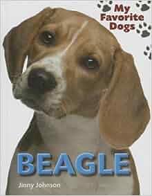 Beagle (My Favorite Dogs (Smart Apple)): Jinny Johnson Aut