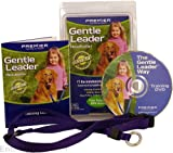 Gentle Leader Head Collar, Size: Medium, Color: Black