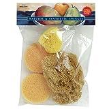 PRO ART Combo Sponge Set, 1 Silk Sponge, 2 Synthetic Sponge and 1 Grass Sponge (S53)