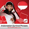 Survival Phrases - Indonesian (Part 1), Lessons 1-30: Beginner French #30 Audiobook by  Innovative Language Learning Narrated by  FrenchPod101.com