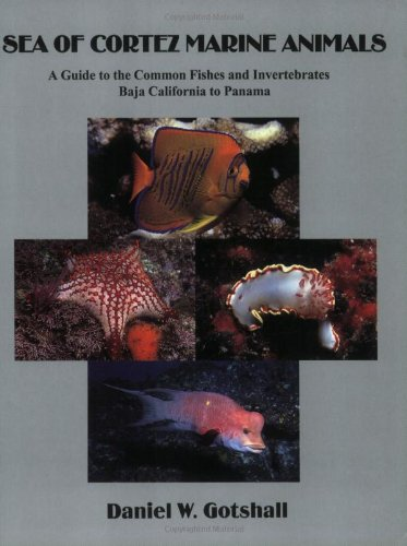 Sea of Cortez Marine Animals A Guide to the Common Fishes and Invertebrates Baja California to Panama093019375X